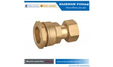 China OEM brass plumbing fittings plumbing coupling water heating fitting